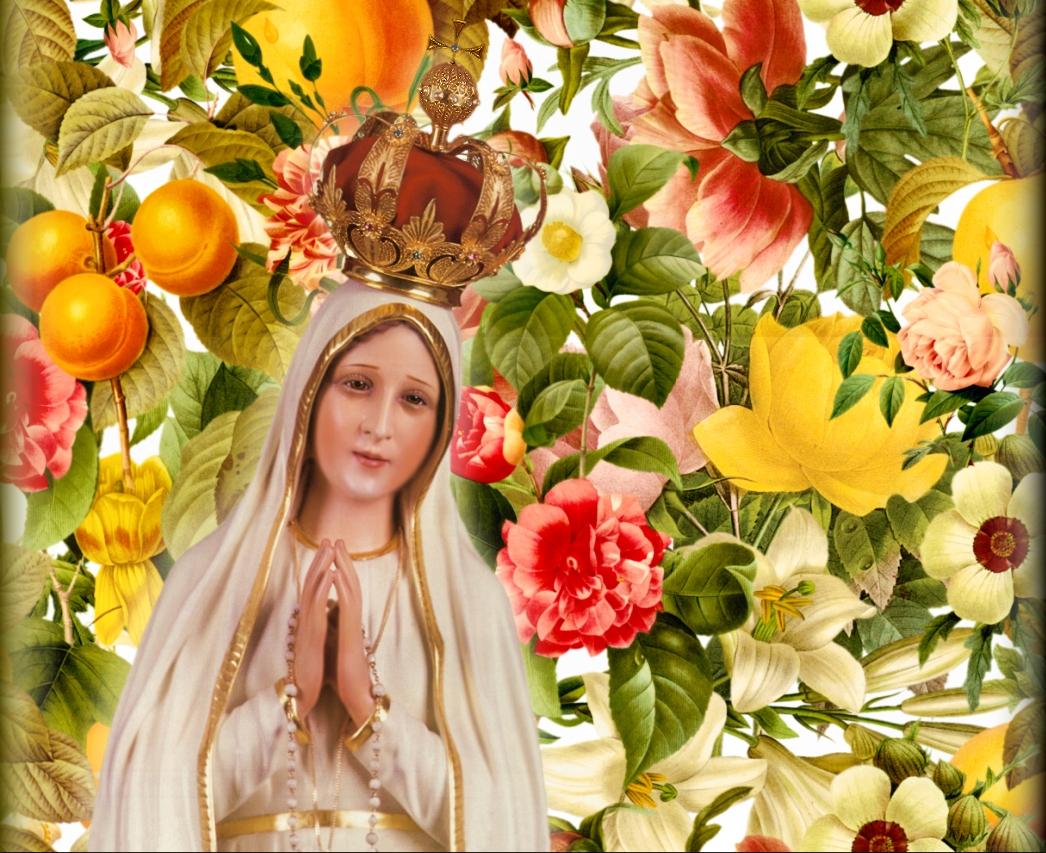 Papel De Parede Nossa Senhora Aparecida: Papel De Parede Nossa Senhora De Fatima